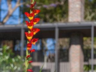 pots-planters-beautiful-flower