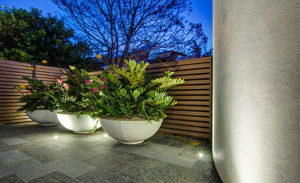 plants-design